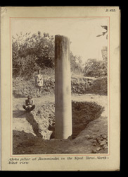 Asoka pillar at Rummindei [Lumbini] in the Nepal Tarai, north-west view